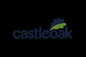 Castle Oak logo in blue and green